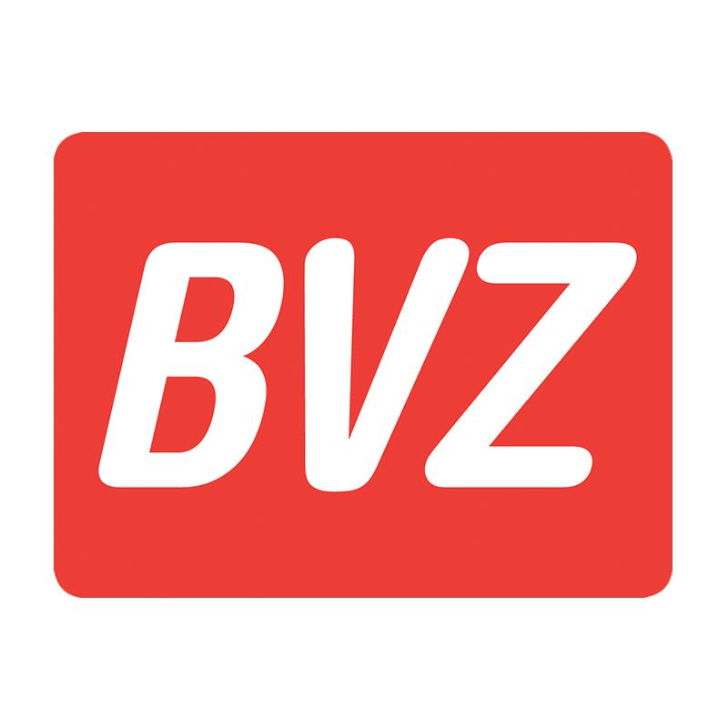 bvz_square